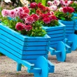 Easy gardening ideas for the elderly