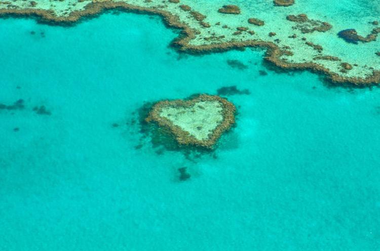 great barrier reef queensland