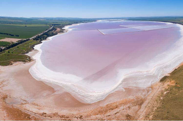 lake bumbunga south australia