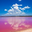 Pink lakes in Australia