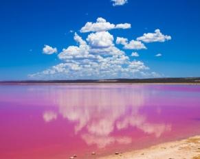 pink lakes australia