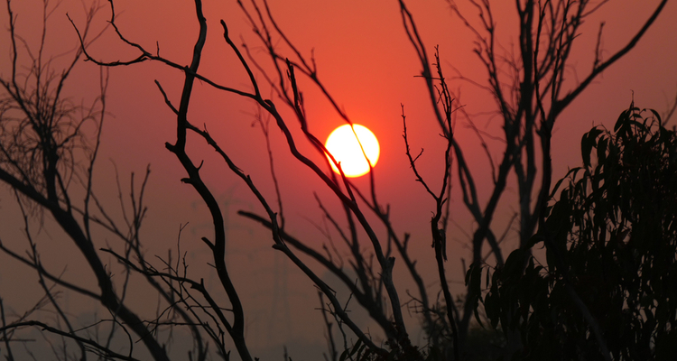 bushfires floods cyclones heatwaves